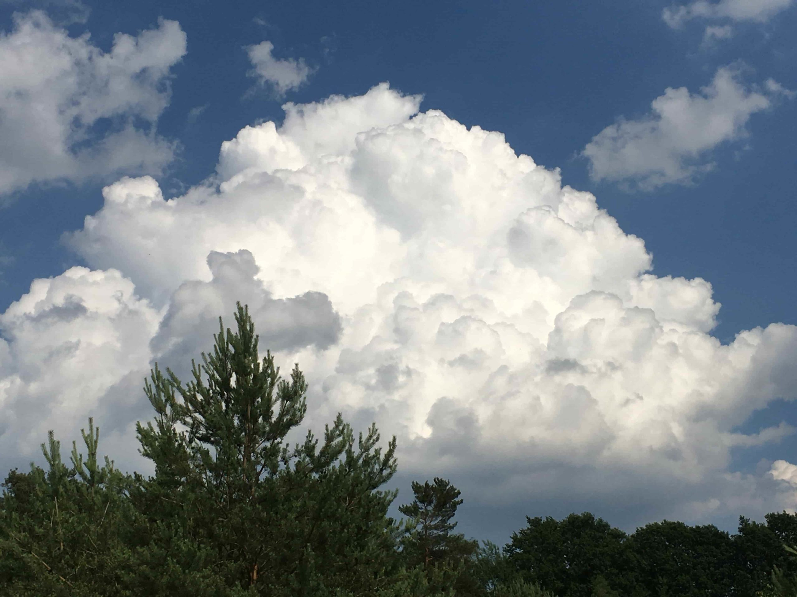 Cumulus Congestus Mias Klimatagebuch